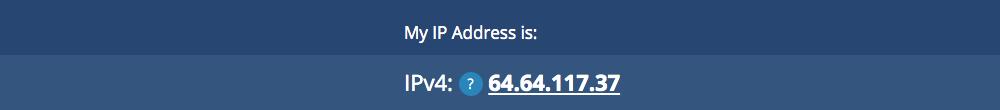 what an IP address looks like